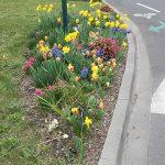 Fleurissement espaces verts Sud Retz Atlantique
