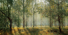 Communauté de Communes Sud Retz Atlantique Gestion forestière